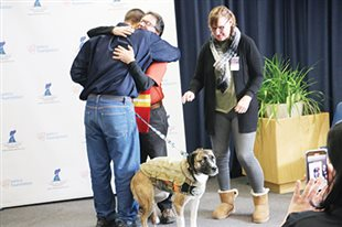 Shelter dogs graduate with flying colors