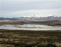 Big water year for Lovelock Valley farmers